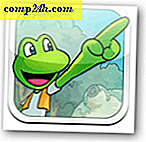 Frogger Turns 30-Frogger Decades wydany dla Apple App-Store